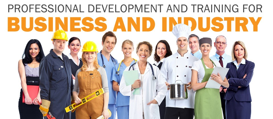 Professional Development and Training for Business and Industry
